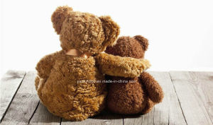 Super Soft Plush Hugging Teddy Bear pictures & photos