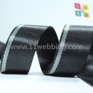 Supply Imitation Nylon Stripe Webbing for Waist Belt / Bag Accessories pictures & photos