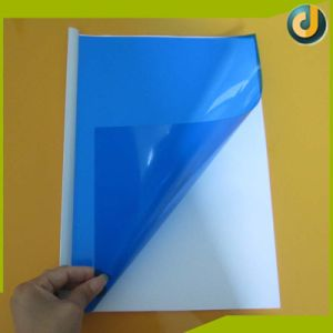 Cheap Price Hotsale A4 A3 A5 PVC Binding Covers pictures & photos