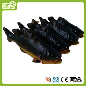 Fish Latex Pets Toys Pet Product pictures & photos