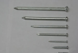 Common Nail/ Common Iron Nail Made in Factory pictures & photos