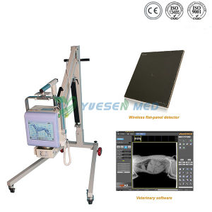 Ysx040-C Medical Hospital Mobile 4.0kw Portable Plat Panel Detector Veterinary X Ray Machine pictures & photos