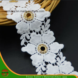 100% Cotton High Quality Embroidery Lace (HSS-1708) pictures & photos