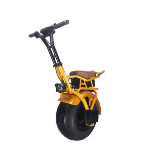 18 Inches Electric Unicycle Self Balance Scooter Motor with E-Brake pictures & photos