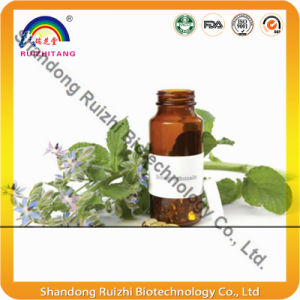 High Quality Rich in Nature Gamma Linolenic Acid Borage Oil pictures & photos