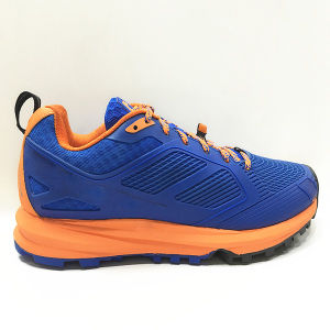 Comfort Leisure Sports Running Shoes for Women and Men pictures & photos