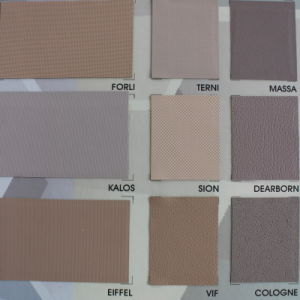 PVC Thin Plastic Sheet PVC Film for Car Decoration pictures & photos