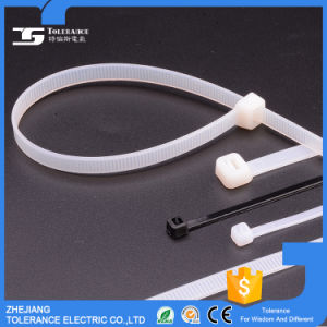 High Quality Plastic Push Mount Cable Tie