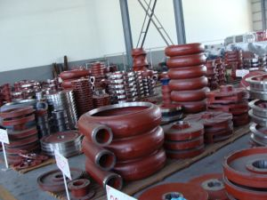 Pump Parts, Pump Rotor, Pump Bearing Assembly pictures & photos