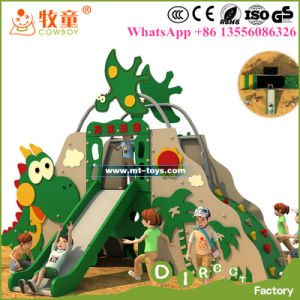 Children Plastic Material Outdoor Slides, Kids Play Ground Slides for Theme Park and School pictures & photos