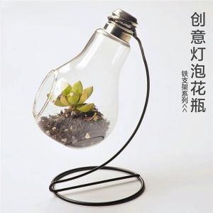 Modern Artistic Terrarium Borosilicate Glass Vase pictures & photos