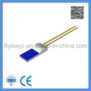 Platinum Resistance Temperature Detector PT100 Class B pictures & photos
