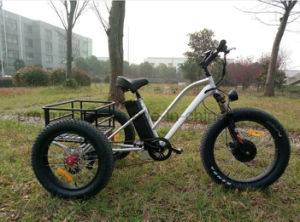 Three Wheel Electric Bicycle with Cargo pictures & photos