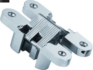 Stainless Steel Concealed Hinge for Folding Door pictures & photos