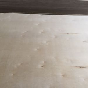 1220*2440mm C/D Grade White Full Birch Plywood for Furniture pictures & photos