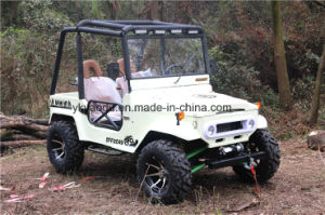 Mini Jeep Willys with 150cc/200cc/300cc Gy6 Engine pictures & photos
