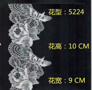 Fashion Bra Lace Trimming (carry with oeko-tex standard 100 certification) pictures & photos