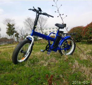 350W Folding Ebike with Fat Tire pictures & photos