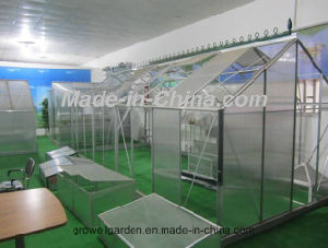 2.1m*4.2m Polycarbonate and Alu. Frame Hobby Greenhouse (HB714) pictures & photos