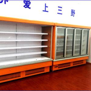 Supermarket Plug in Vertical Glass Door Freezer pictures & photos