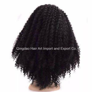High Quality Human Remy Hair Curly Full Lace Wig pictures & photos