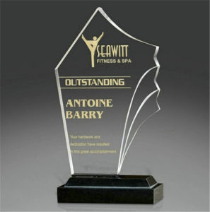Custom Acrylic New Design Crystal Trophy Award pictures & photos