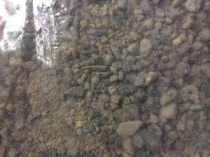 Hot Repair Cement pictures & photos