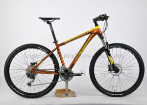 Competitive Price Aluminum Frame Mountain Bicycle (FP-MTB-A047) pictures & photos