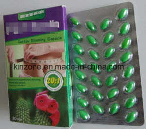 Hoodia Cactus Slimming Capsules Weight Loss Softgel pictures & photos