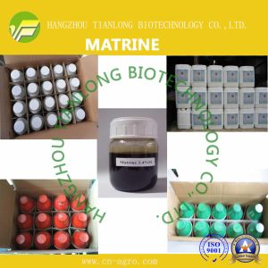 Biological Insecticides Matrine (98%TC, 0.3%SL) pictures & photos