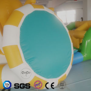 Coco Water Design Inflatable Rainbow Theme Water Slide LG8092 pictures & photos