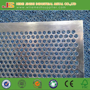 Stainless Steel Perforated Metal Sheet Made in China pictures & photos