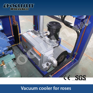 2016 New Vacuum Pre Cooling Machine pictures & photos