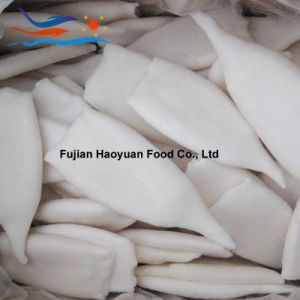 Manufacturing Frozen Seafood Squid pictures & photos