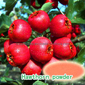 Hawthorn Powder