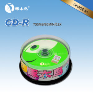 CD-R Woodpecker