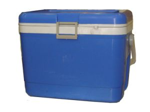 Cooler Box, Ice Box, 17L, Cooler Box pictures & photos