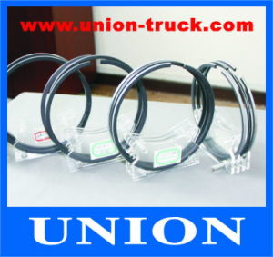 Diesel Engine Parts Piston Ring for Styer pictures & photos
