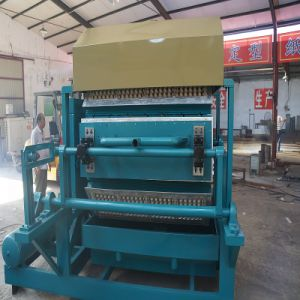 FC Paper Egg Tray Machine CE Certificate