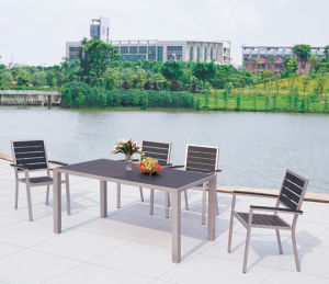 Aluminum Plastic Wood Furniture (TA-7020)
