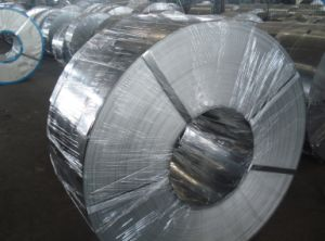Prime Cold Rolled Steel Strap SPCC pictures & photos