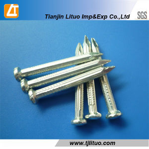 Q195 Common Wire Rod Nails Polished Common Nail pictures & photos