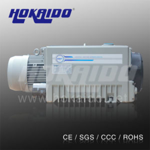 Plasma Clean Machine Used Vane Vacuum Equipment Pump (RH0040)