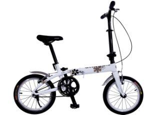 Carbon Fiber Folding Bicycle pictures & photos