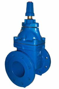 Non Rising Stem Resilient Gate Valve with Cap Top pictures & photos