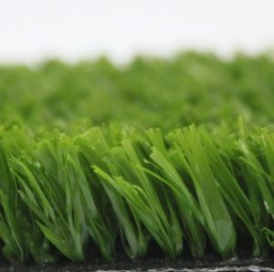 Artificial Grass, Football Grass, Soccer Grass, Sports, Playground Grass (PD/SF25) pictures & photos