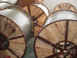 All aluminum conductor bare overhead cable pictures & photos