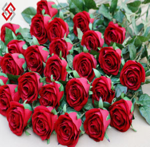 Artificial Faux Rose for Home Wedding Decor Gifts for Valentine (AF-R)