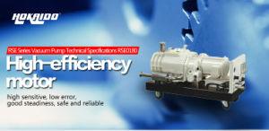 Hokaido Auto High Pressure Dry Screw Vacuum Pump (RSE180) pictures & photos