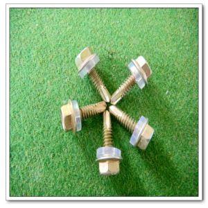 Hexagon Head Flange Screw (DIN7504 (4.8*25))